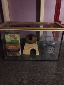 Rodent tank / cage with food and extras