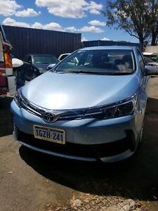 Car for rent Toyota Corolla sedan 2018