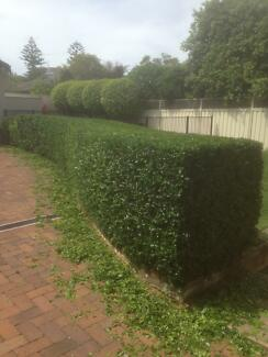 Astens Lawn mowing and gardening Sutherland Sutherland Area Preview