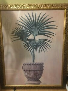 Framed Palm Tree Picture/Wall Art