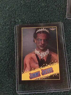 """Princess"""" Jimmy Jacobs Trading Card, ROH, Impact, WWE Writer (Jacobs Trading)"""