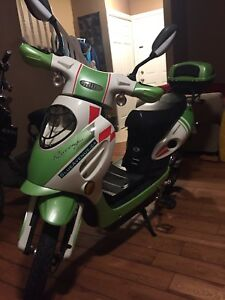 48v Green and White Ebike for Sale with Charger