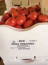 Roma sauce tomatoes Tatura Outer Shepparton Preview