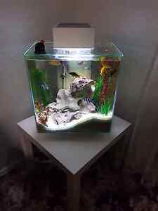 Fluval edge 46l tank Blacktown Blacktown Area Preview