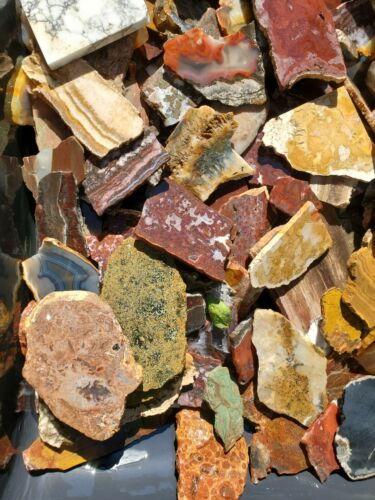 20 Miscellaneous lapidary Slabs Random Pull Every Box Has a Great Variety