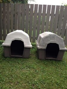 Niches pour chiens moyens 50-60 lbs