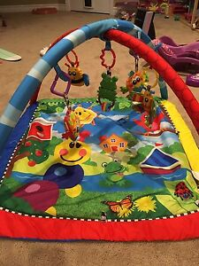 Play Gym - Baby Einstein