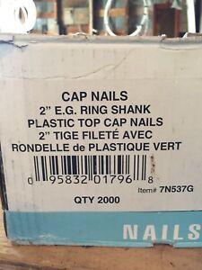 """2"""" cap nails"""