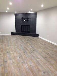 2 bedroom basement suite available March 1