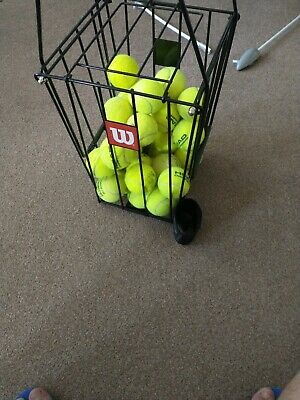 12 Used tennis balls for dogs
