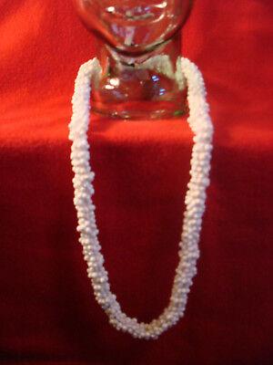 """Hawaiian 16"""" Polished Sea Shell & Kukui Nut Lei Necklace"""
