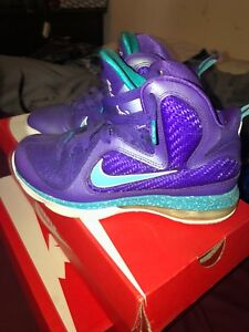 "Lebron 9 ""SUMMIT LAKE HORNETS"""
