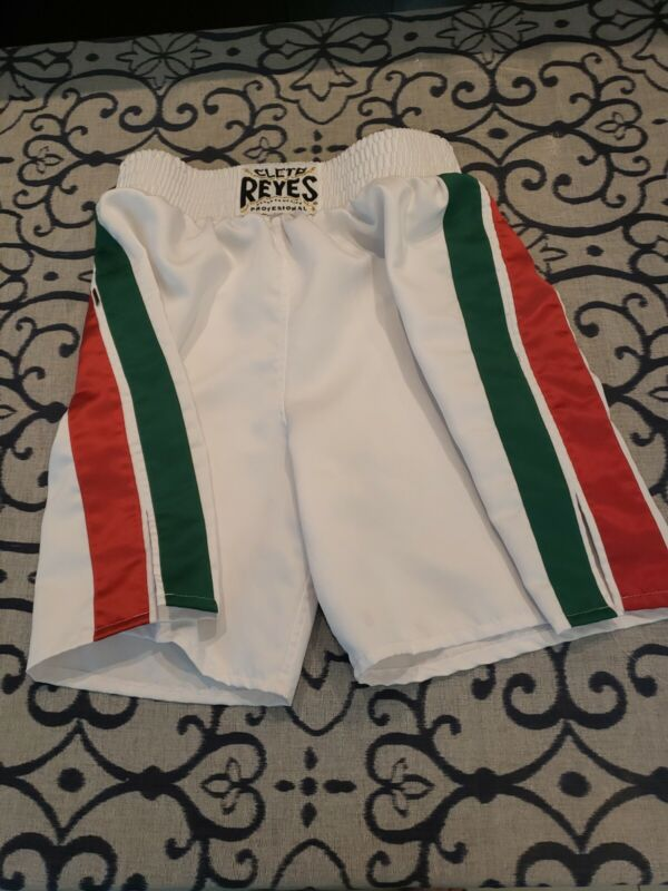 Cleto Reyes Satin Classic Boxing Trunks - White with Red Green Stripes Large