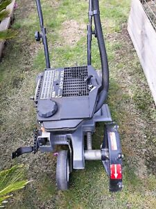 Vicar lawn edger