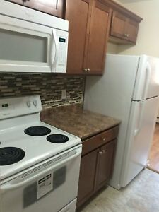 Newly Renovated Two Bedroom Suite available in Dartmouth