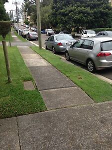 Lawn mowing and gardens care , Surry Hills Inner Sydney Preview