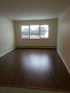 BEAUTIFUL 1 BDRM, RENOVATED IN SPRYFIELD JULY 1ST