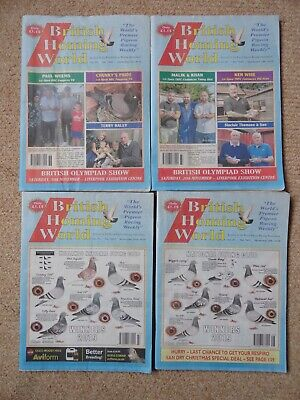 4x British Homing World racing pigeon birds magazines back issue Sept/Nov 2019