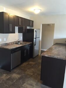 Spacious Updated 2 &3 Bedroom-2431 Portage Ave