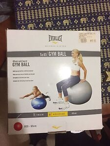 EVERLAST EXERCISE GYM BALL Rutherford Maitland Area Preview