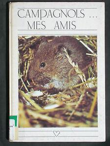 Campagnols mes amis - Micro-mammifères Bolwif rats souris muridés 1979 nature - France - État : Etat correct: Livre présentant des marques d'usure apparentes. La couverture peut tre légrement endommagée, mais son intégrité est intacte. La reliure peut tre légrement endommagée, mais son intégrité est intacte. Existence possi - France