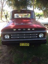 Dodge ute Forest Hill Wagga Wagga City Preview