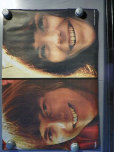 """Vintage Poster """"The Carpenters"""" 1972 24x36 Photo by Robert Trendeler"""