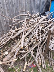Free kindling firewood botany Botany Botany Bay Area Preview