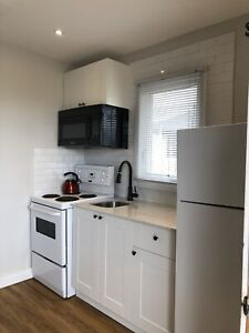 1 bedroom living rm kitchen everything included