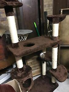 Cat Tree - Used Everton Park Brisbane North West Preview
