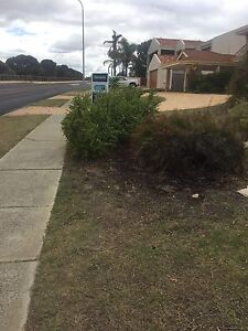 Trees for free Mullaloo Joondalup Area Preview