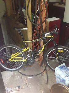 Ccm bike adult 250 obo