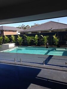 Pool areas West Wallsend Lake Macquarie Area Preview