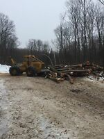 Logging and landclearing