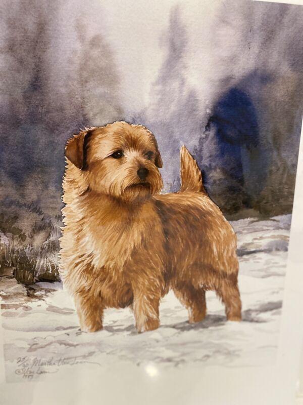 Norfolk Terrier In Snow Ltd Ed 11x14 Print By Van Loan