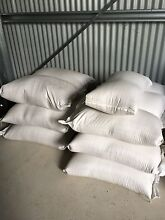 40kg bags of oats, whole barley and wheat South Maitland Maitland Area Preview