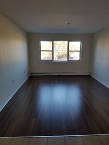 BEAUTIFUL RENOVATED 2 BEDROOM IN SPRYFIELD NOW OR JAN 1ST