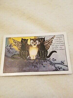 Vintage Antique Halloween Postcard black cats and Owl unused