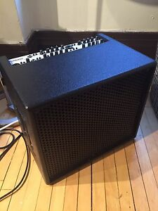 AER domino acoustic amp