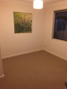 Room for rent - Aubin Grove Aubin Grove Cockburn Area Preview