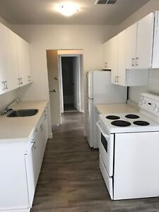 ALL INCLUSIVE Apt in Central Location- Mins to Sault College!