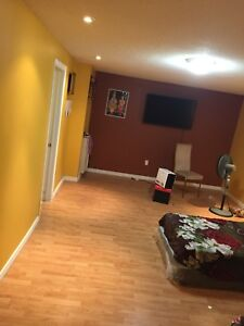 A large beautiful 2 bedroom basement for rent