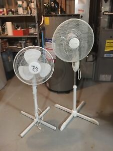 White Tall Fans