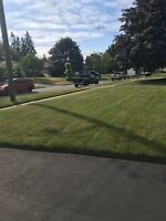 Lawn care $40/Spring clean up/Seniors discounts/Insured/