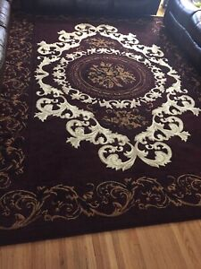 8X12 area rug (2 months old)