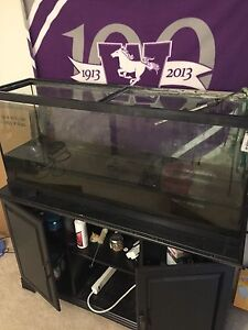 55 Gallon Miracle tank and 55 Gal tank stand