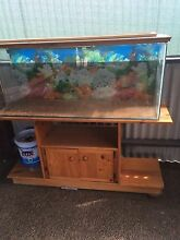 Fish/reptile tank Kurri Kurri Cessnock Area Preview