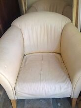 Leather Moran arm chairs Whitfield Cairns City Preview