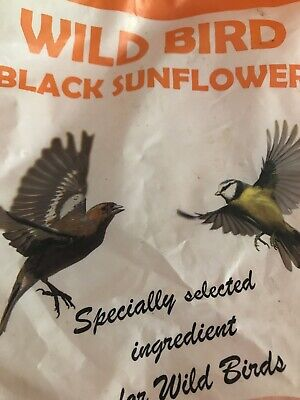 Black Sunflower Seeds Hearts - Premium Wild Bird Food Sachet - Quick Sale