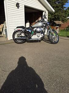 2005 Harley Davidson custom